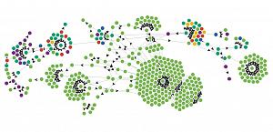 Network Charts